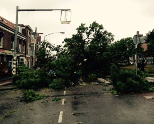Code red weather warning - heavy damage in Haarlem and surroundings (Photo: Haarlems Dagblad)
