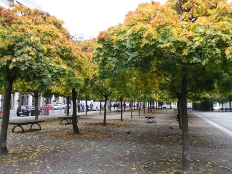 Herbst-Feeling
