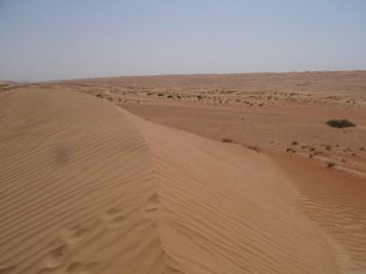 Wüste bis zum Horizont
