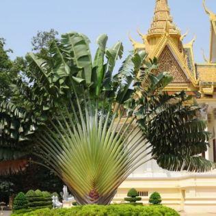 Preah Barom Reachea Vaeng Chaktomuk