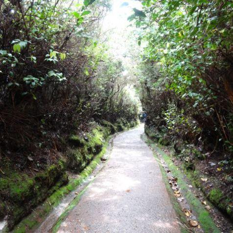 auf zum Volcán Poás