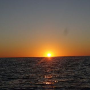 Tschüss, Galapagos