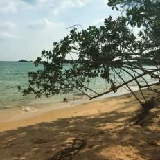 Strand-Tag