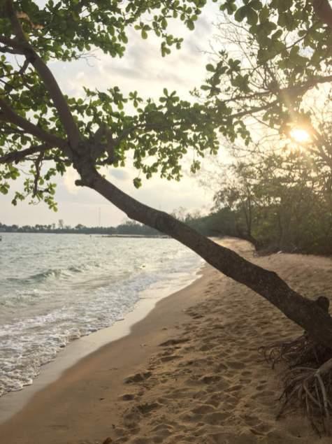 Strand-Leben