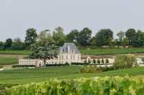 Chateau in St. Emilion