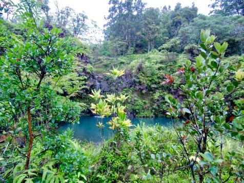 verwunschene Lagune