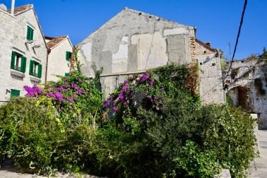 Blumen an einer Häuserwand