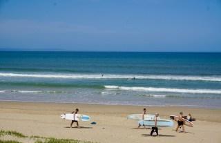 Dolphins Beach mit Surfern