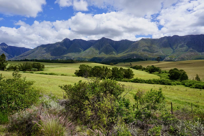 Südafrika ist grün im November