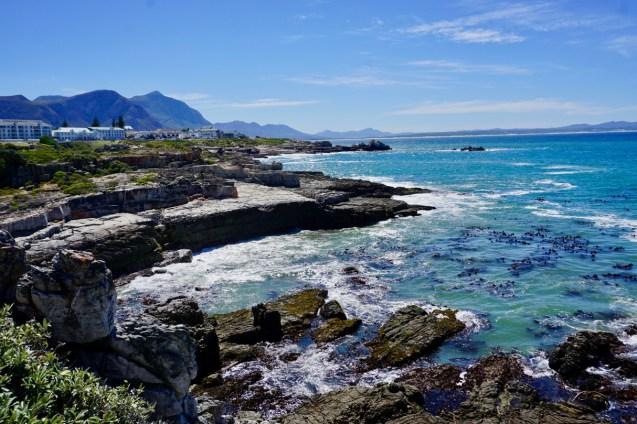 Blaues Wasser und Algen