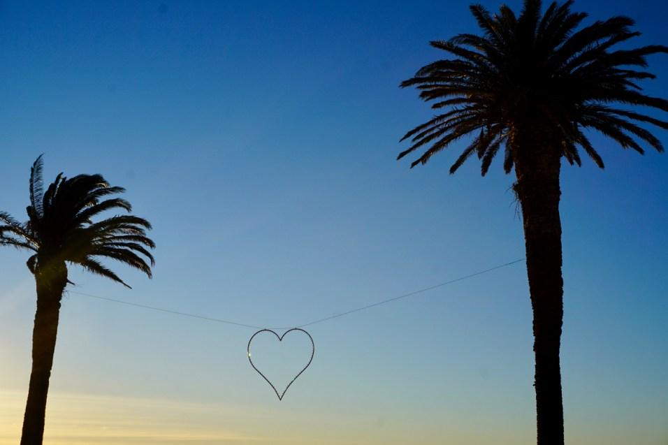Palmen und Herz