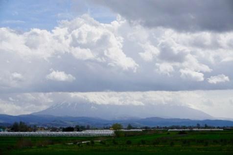 Felder & Gewächshäuser auf dem Weg nach Berat