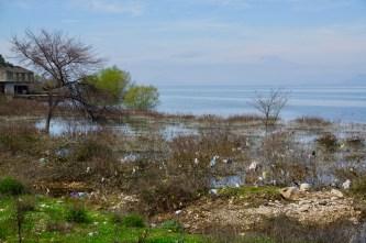 Plastikmüll gibt es in Albanien sehr viel