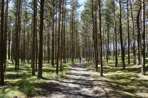 Radtour durch Litauen