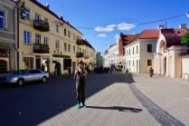 Vilnius in Litauen