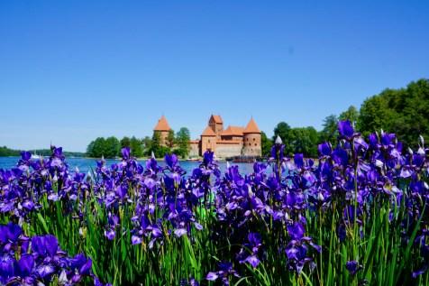 Trakai, ein Wasserschloss in Litauen