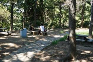 Picknick im Park im August