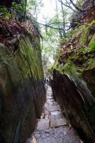 Wanderweg im Zhangjiajie