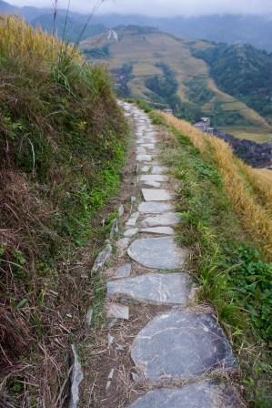Wandern im Reisfeld