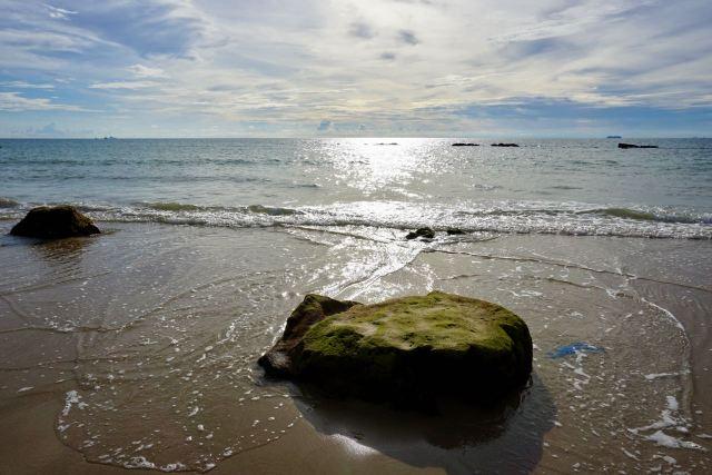 Algen-bewachsene Steine bei Ebbe