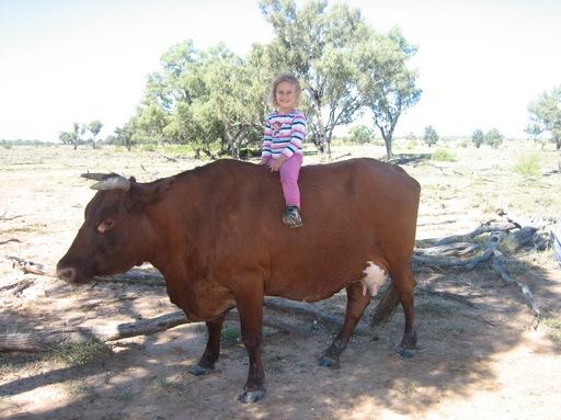 2009-04_au-outback_179_resize.JPG