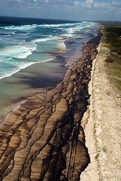 pic-oil-morton-island-1.jpg
