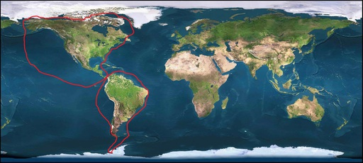 toptotop-1st-circumnavigation-of-2-americas-in-fig-8.jpg