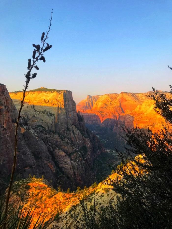 Fiery Orange Sunrise of Zion's Canyon Walls
