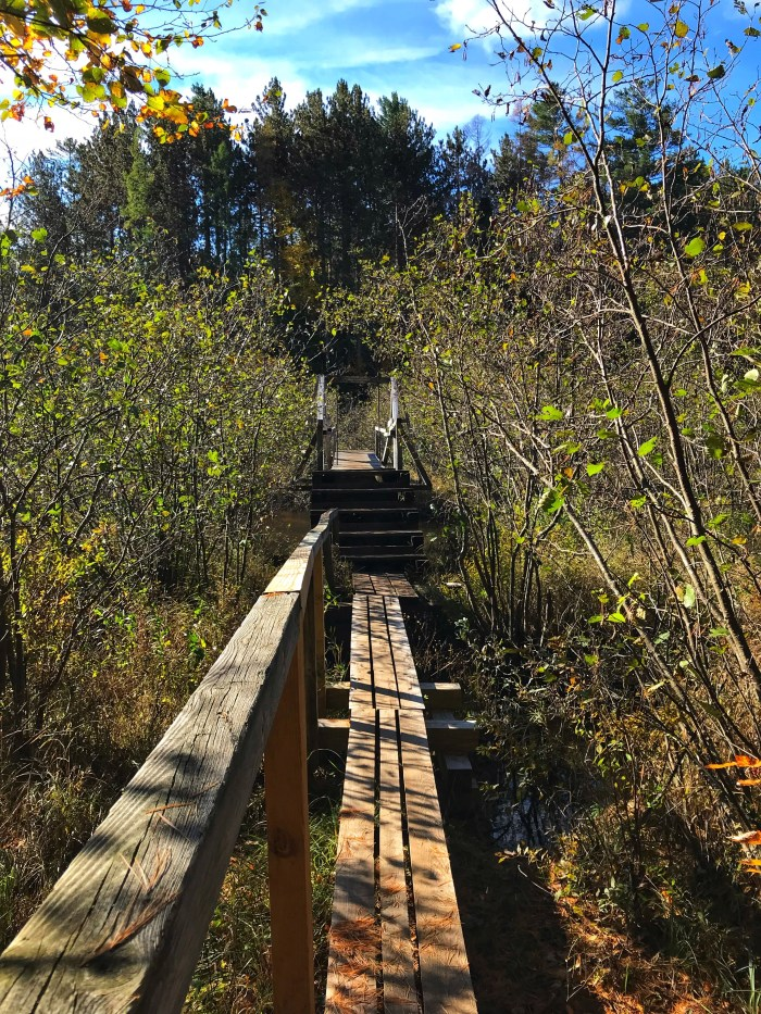 Awesome bridges over a boggy marshland in the Adirondack Mountains