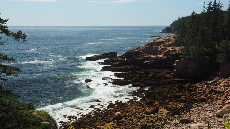 waves crashing on a rocky shoreline surrounded by pines