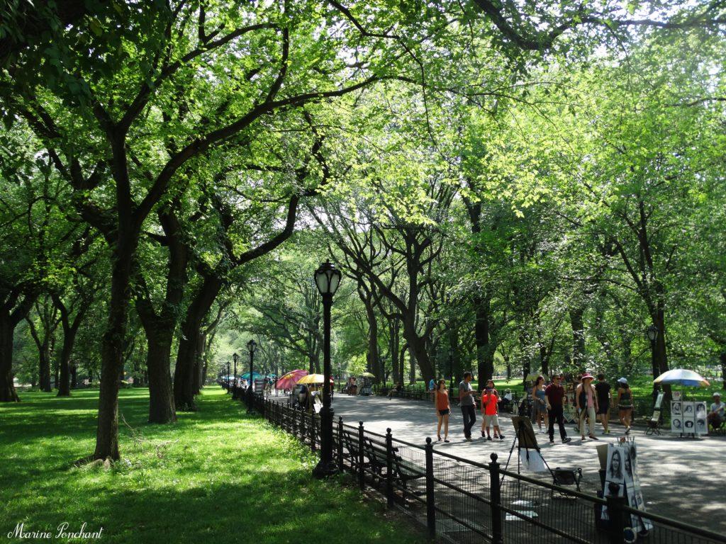 Central Park et ses promenades