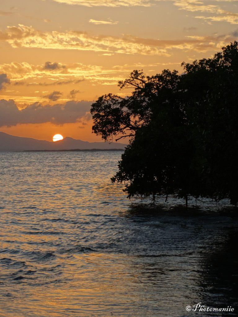 Guadeloupe grand cul de sac marin
