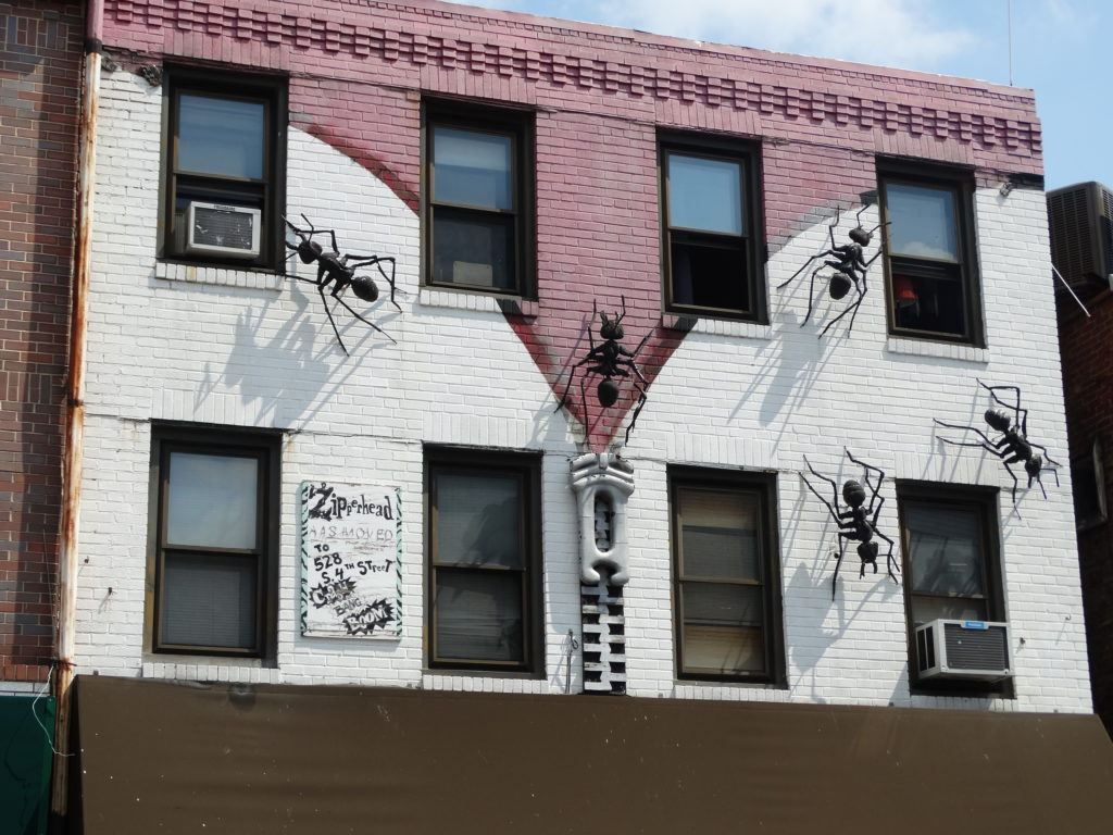 Philly magasin aux fourmis