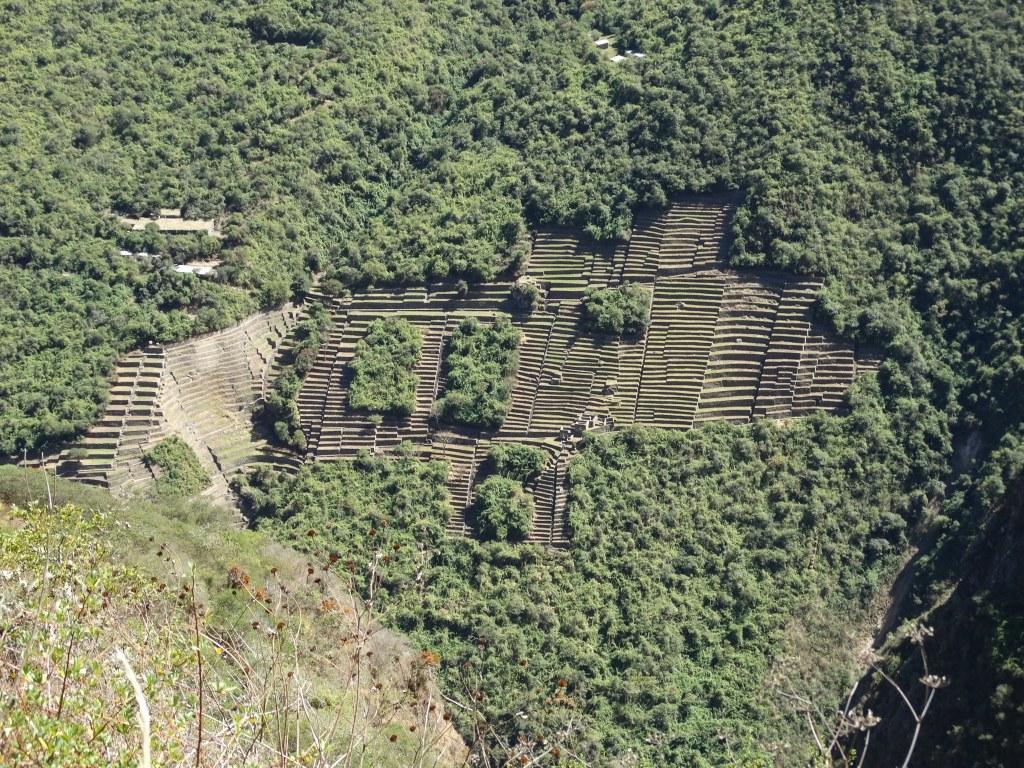 Terrasses basses du site archéologiques