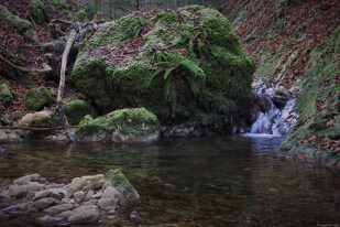 Huge stone blocking the small creek in the Jura mountain - exploring the headwaters