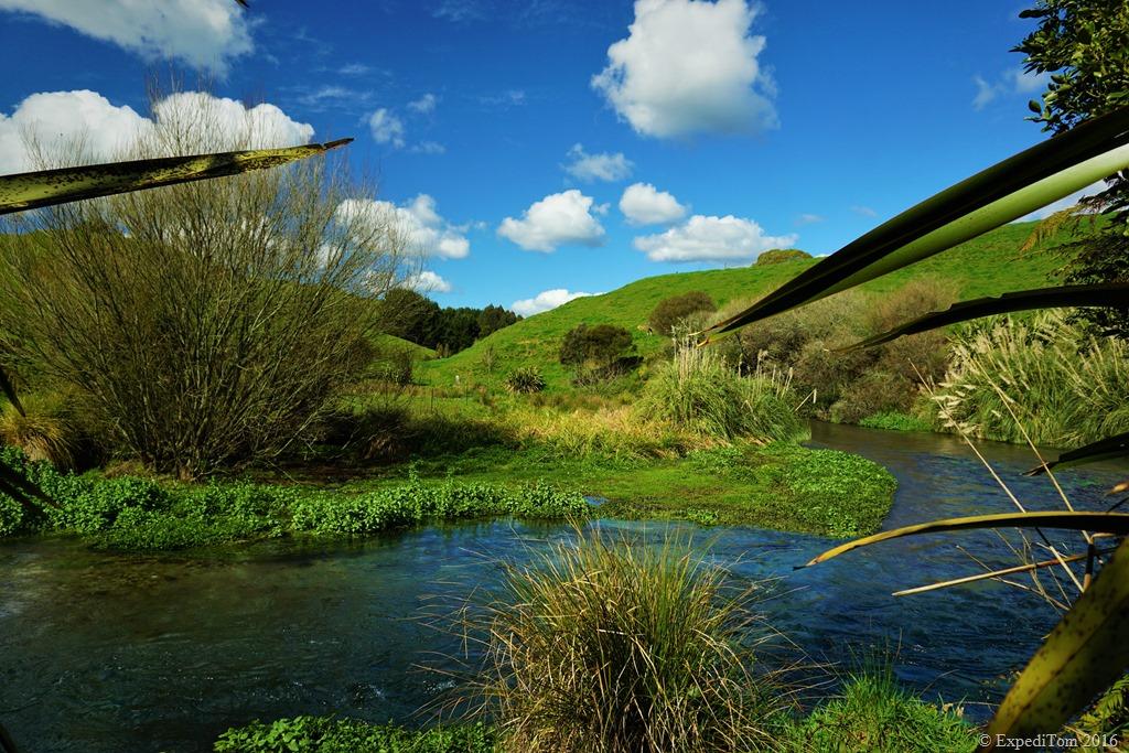 Secret fishing spots in New Zealand