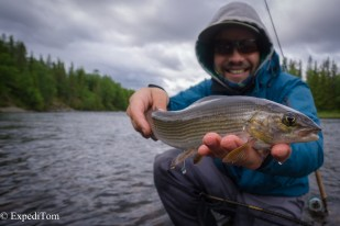 Grayling from around Åre
