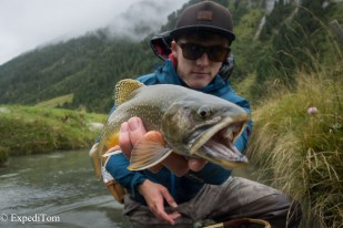 "Vicious arctic char on the ""secret indicator fly"""