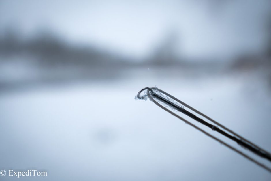 The only thing that offered resistance while fishing for grayling