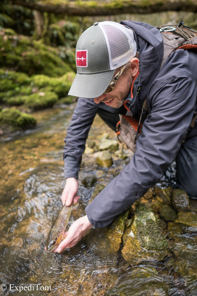 Trout diversity in Switzerland Fly Fishing in Switzerland outdoor, catch and release Swiss alps