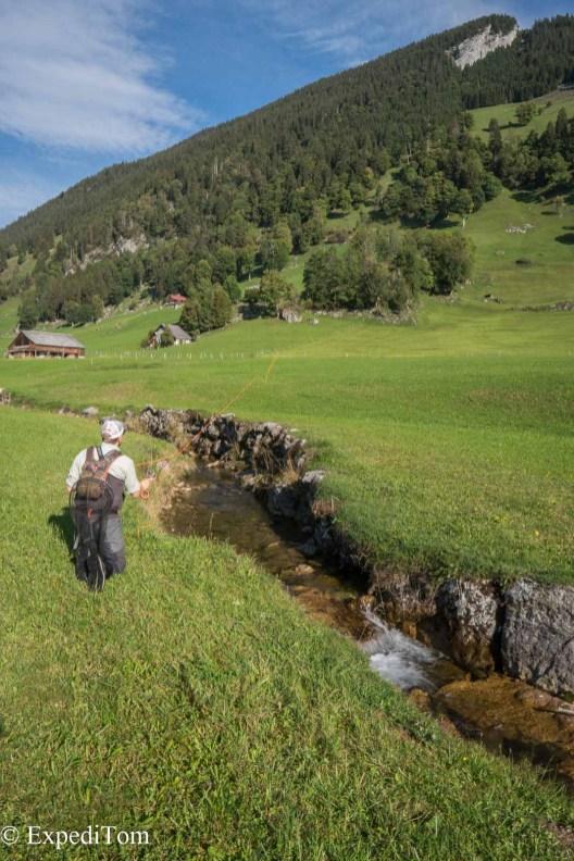 Minute creek in the Swiss Alps