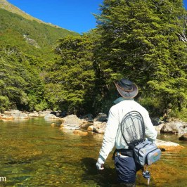 Ups and Downs of Venturing Solo: Fishing on your own