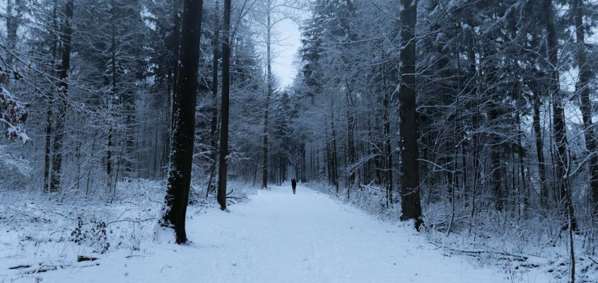 What to Look for in a Winter Sleeping Bag Part 2