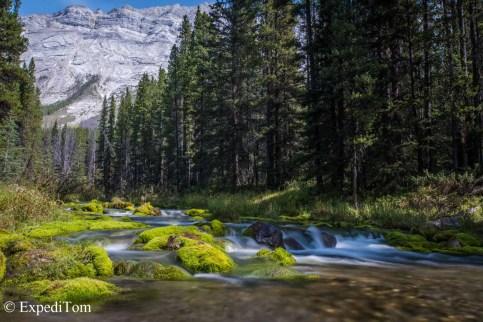 Bryant Creek