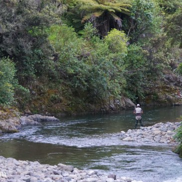 "Fly Fishing with the AFAC: ""You can't miss it"""