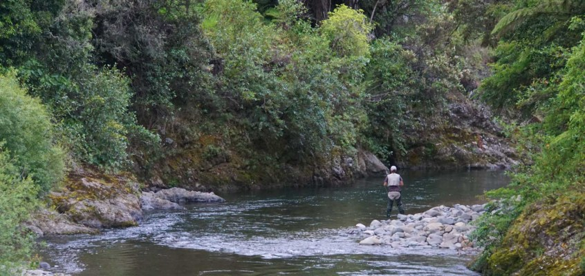 """Fly Fishing with the AFAC: """"You can't miss it"""""""