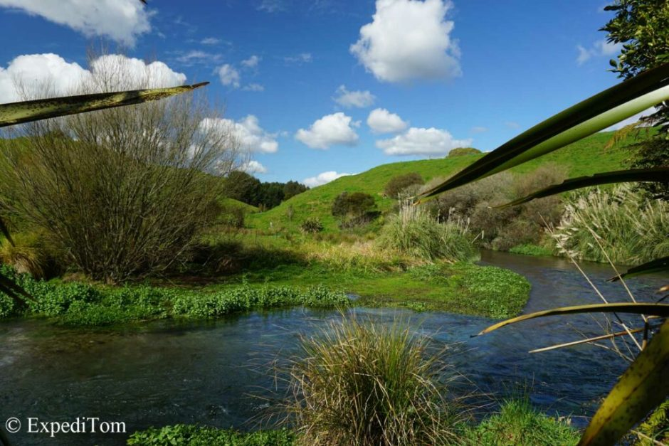 Mind-boggling scenery at Blue Springs NZ