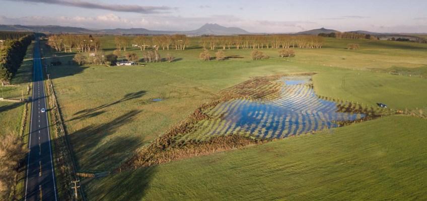 Aerial view of wetland restoration