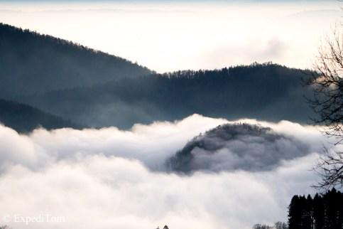 The Swiss sea beyond the fog