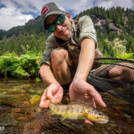 Guided Fly Fishing Trip Engadin
